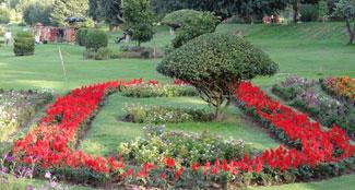 jawaharlal-nehru-botanical-garden